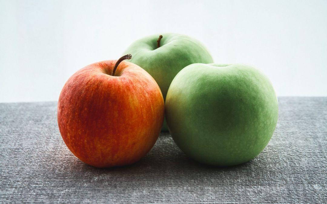 Darmbakterien verhindern das Abnehmen? 3 Tipps für mehr Schlank – Bakterien!